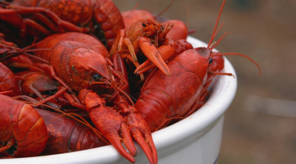 There's a crawfish boil happening in a Toronto parking lot this weekend