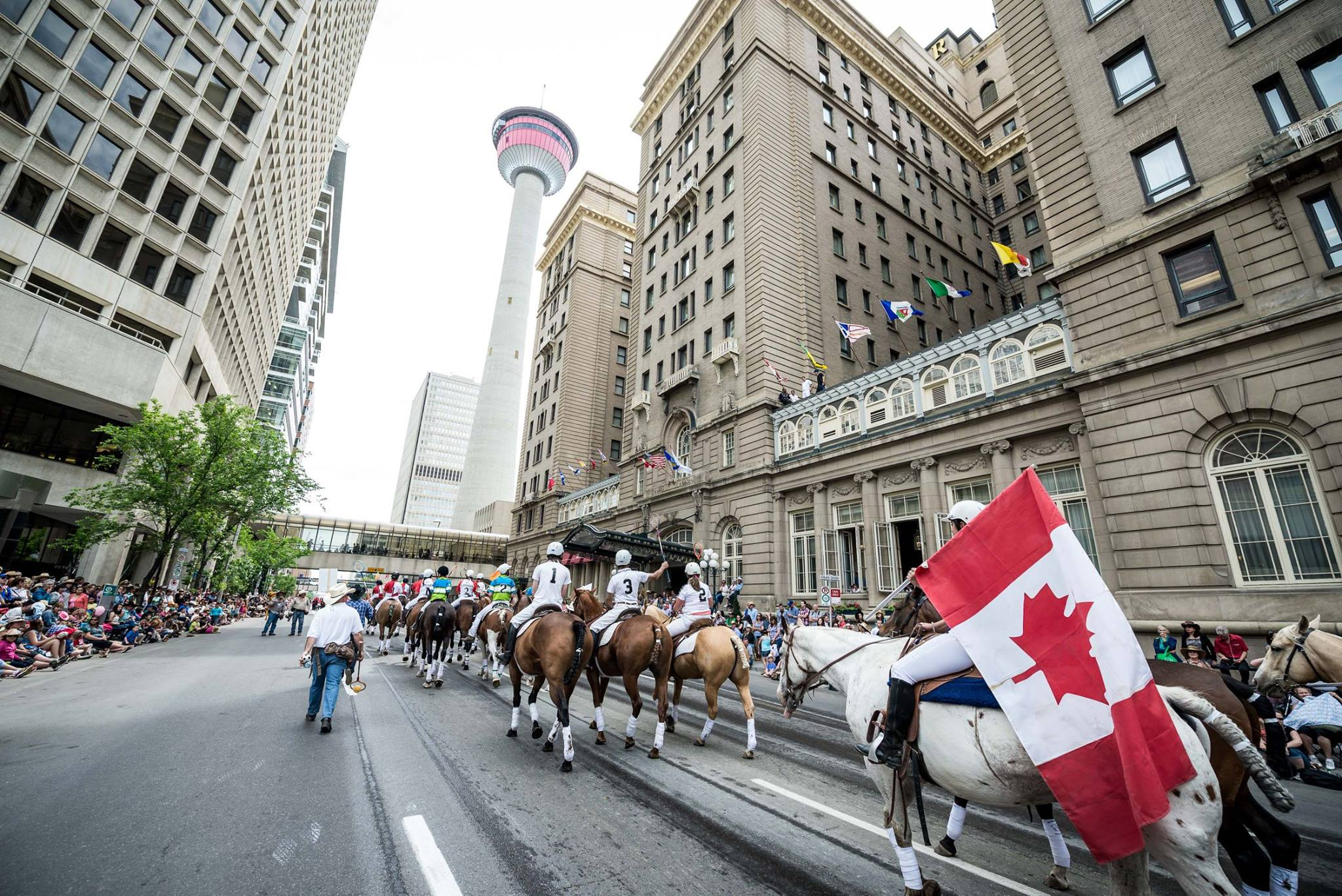 12 free things to do in Calgary during Stampede 2017
