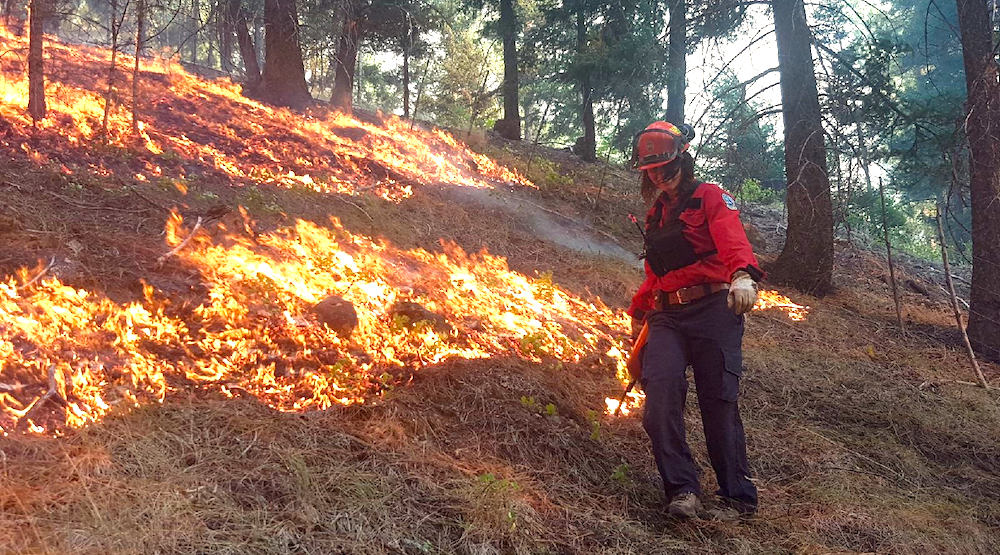 Op-Ed: Destructive wildfires in BC can be avoided with proper controlled burning