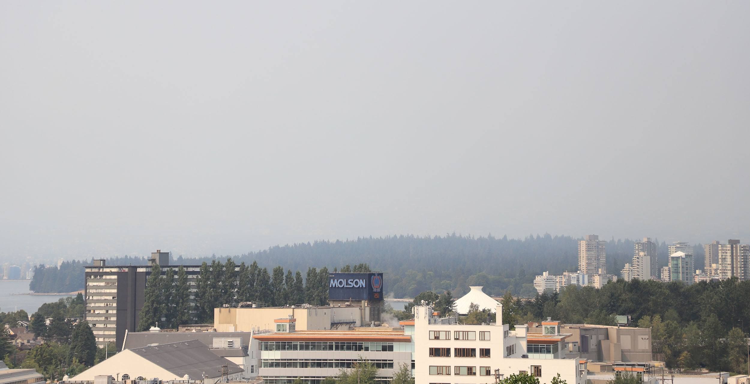 Vancouvers mountains are lost in the smoky haze jenni sheppard daily hive