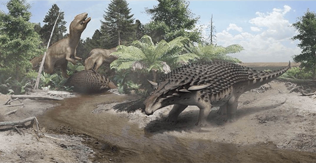 Royal Tyrrell Museum names newly found 110-million-year-old dinosaur