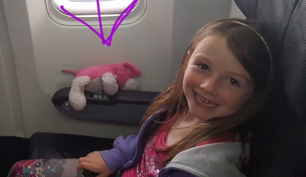 The Internet is hunting down a little girl's stuffed dog that was lost in Toronto