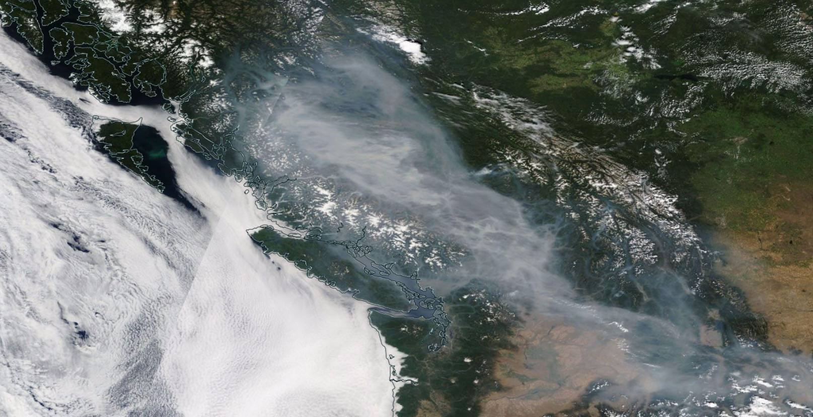 Here's what the wildfire smoke over BC looks like from space right now (GIF)