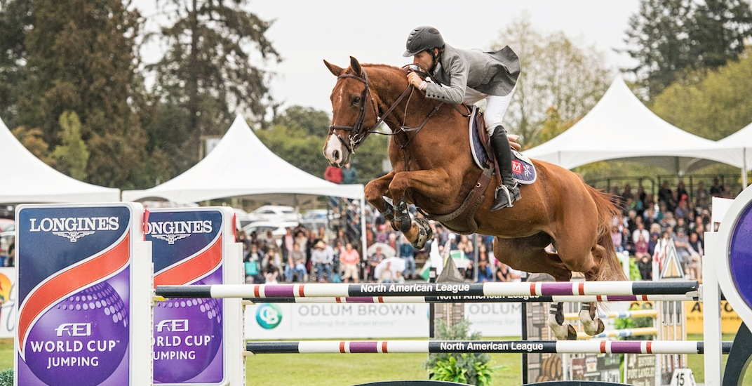 Equestrian show jumping event coming to Stanley Park on August 23