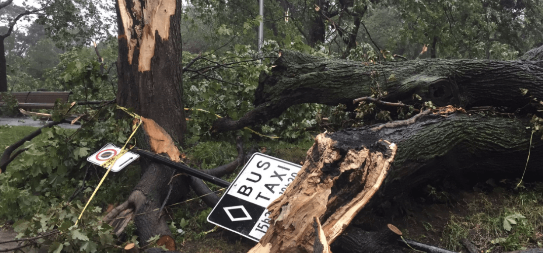 Huge storm topples trees and causes power outages in Montreal (VIDEO)