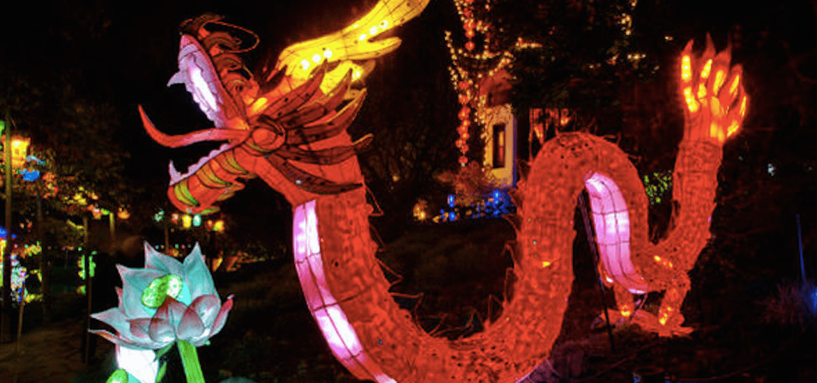 This year's Gardens of Light festival theme has been revealed