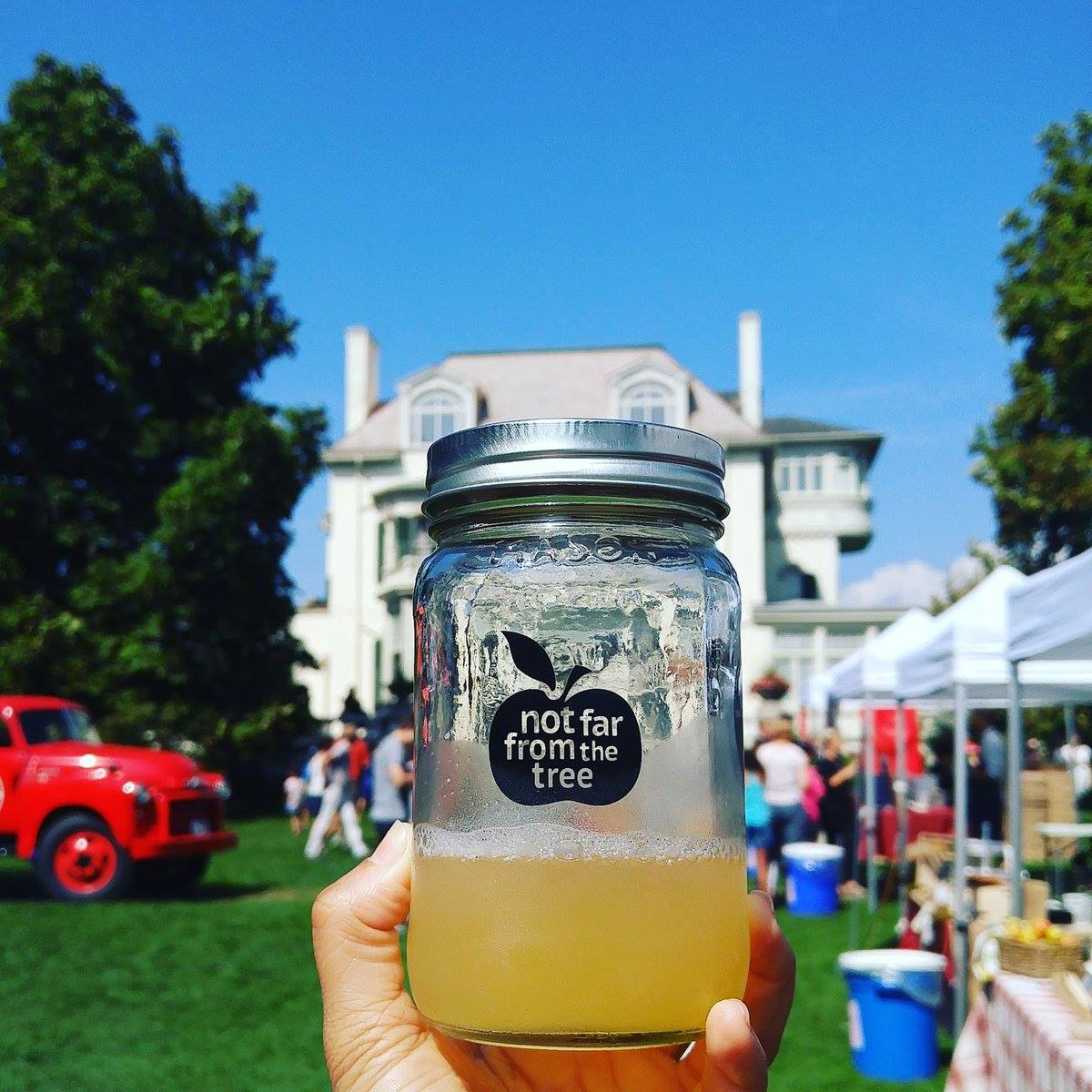 City Cider apple season