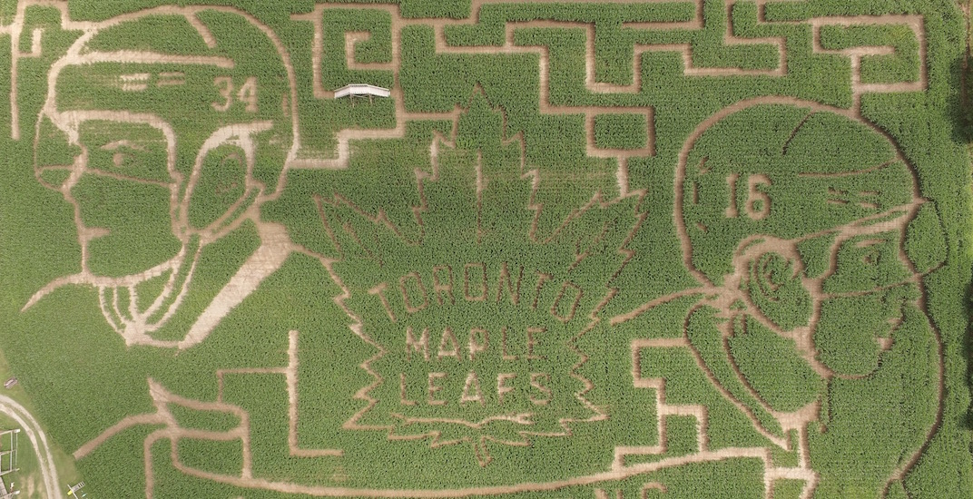 Check out this giant Maple Leafs corn maze in New Brunswick (VIDEO)