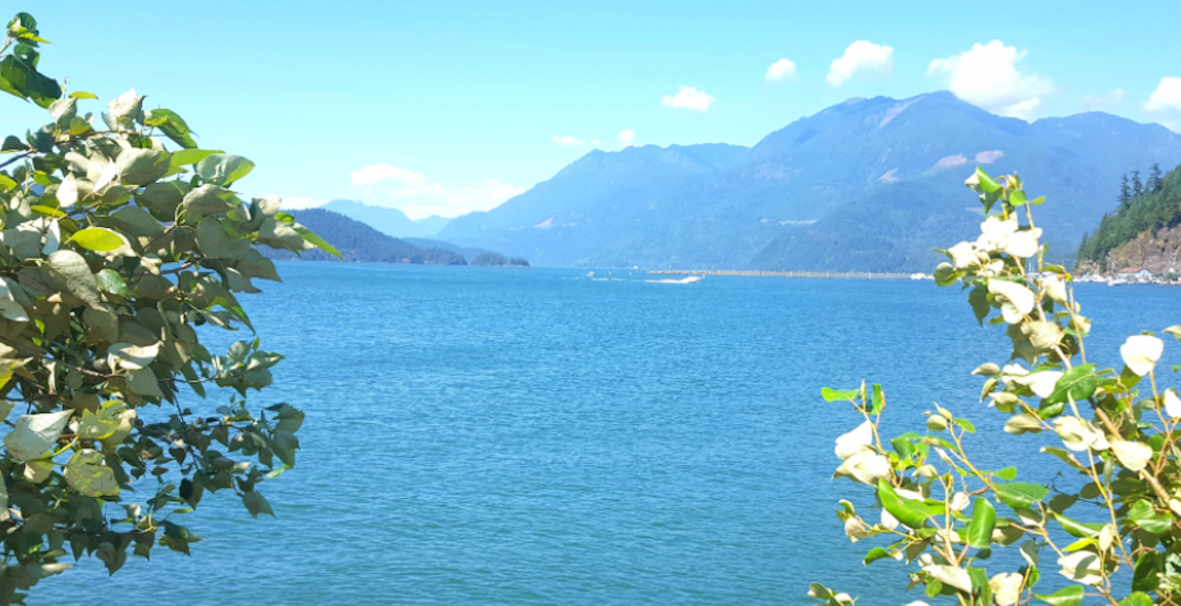 Teenager and young man drown at Harrison Lake