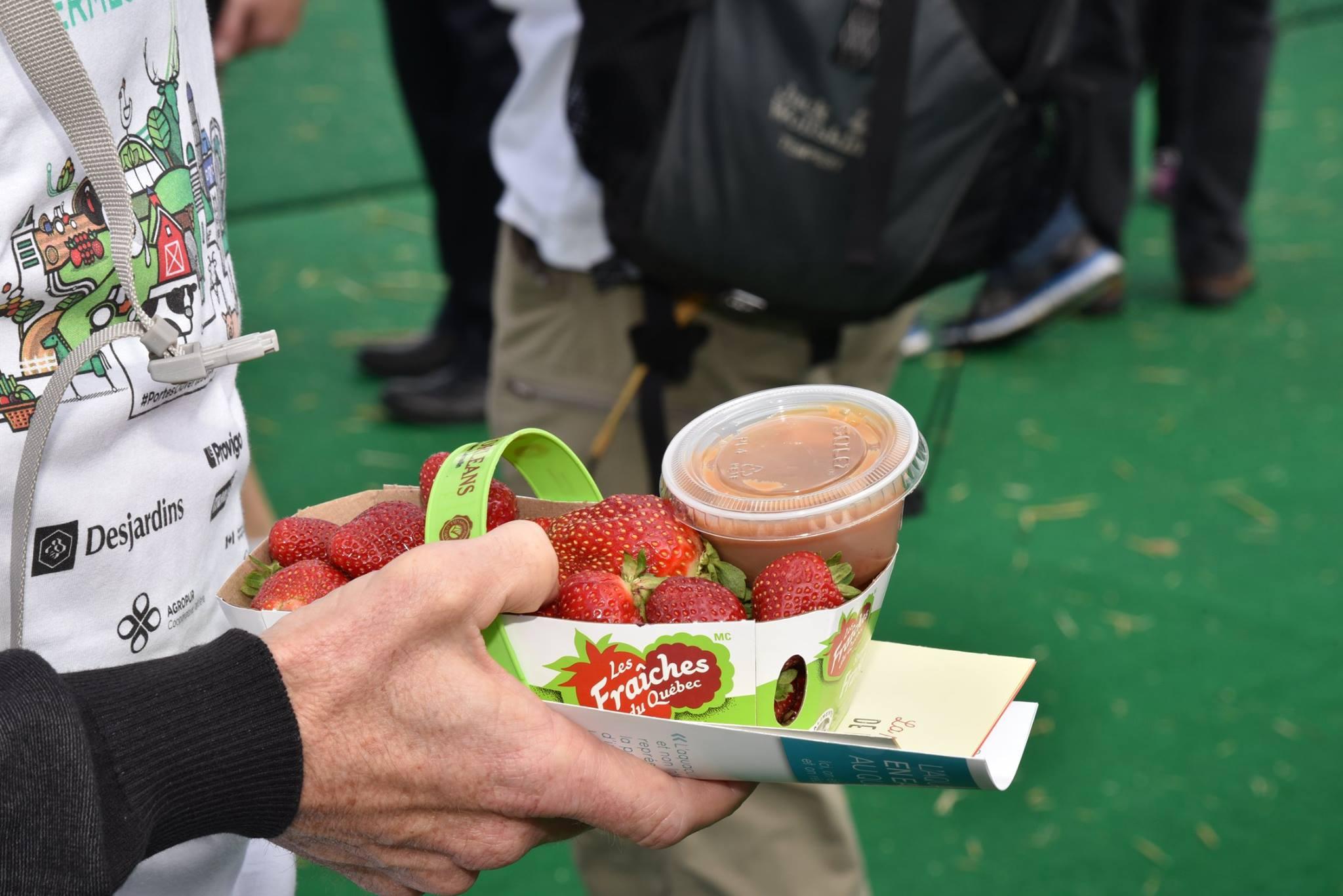strawberries farmers market montreal