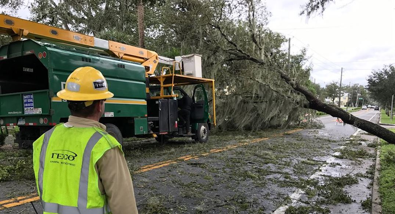 Toronto Hydro crews heading to Florida to help after Hurricane Irma