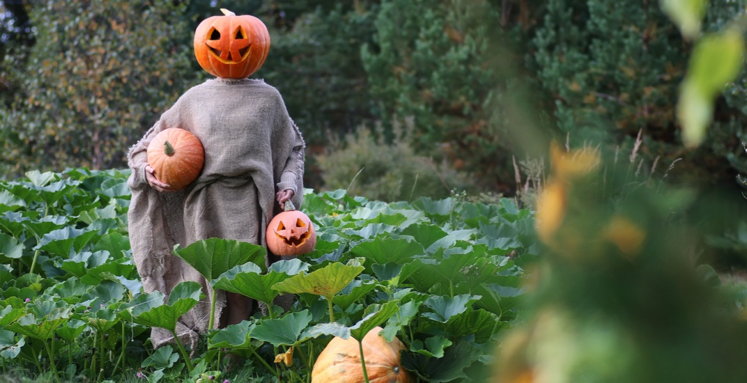 There's a Haunted Harvest Party happening 2 hours from Toronto this fall