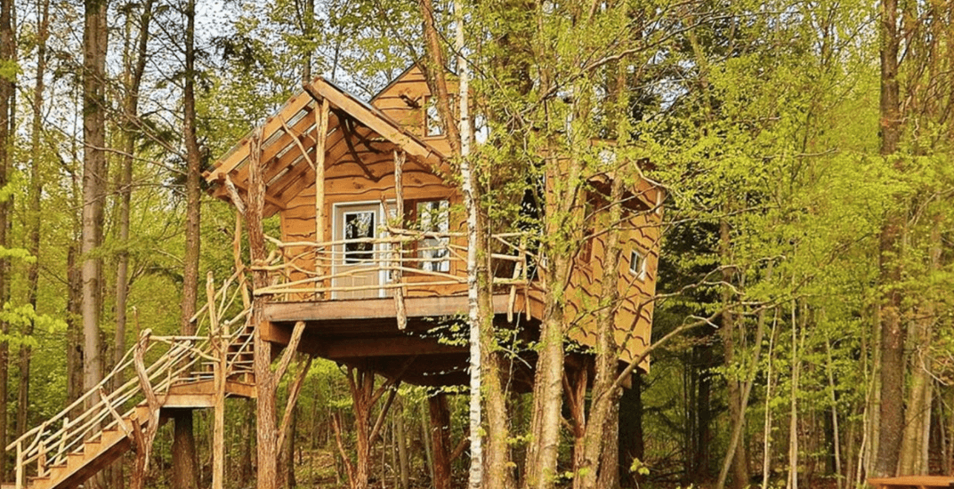 Quebec 'treehouse' resort named Canada's leading wilderness resort (PHOTOS)