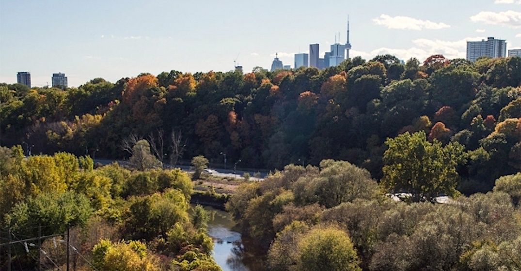 Toronto's Lower Don Trail to officially reopen this weekend