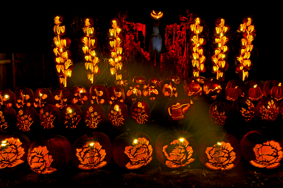 An amazing pumpkin lantern festival is happening near Montreal this month (PHOTOS)