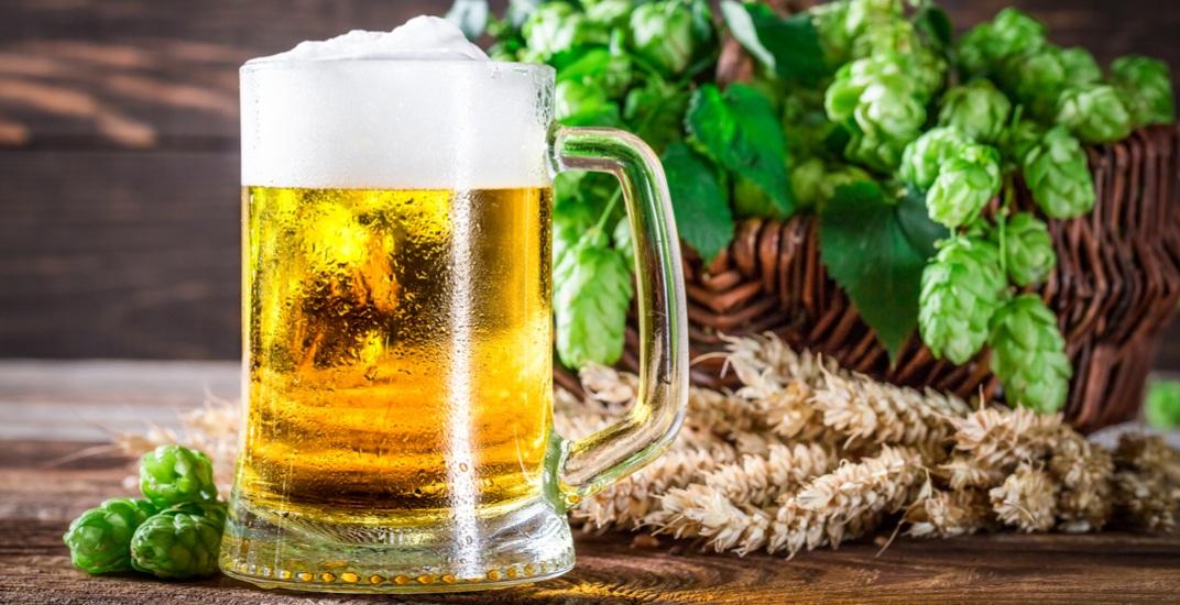 Beer and fresh hops shaiithshutterstock