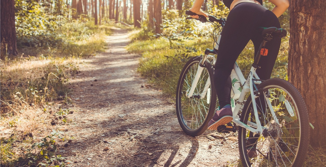 The 9 best trails to bike in Toronto this fall