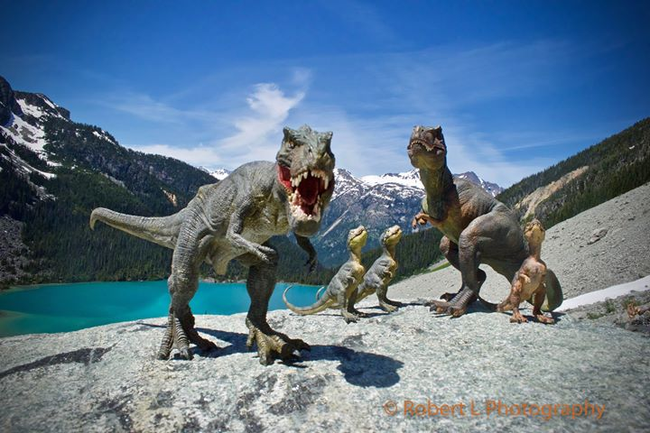 A family of Tyrannosaurus Rex in British Columbia (Robert L Photography)