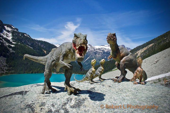 A family of Tyrannosaurus Rex in British Columbia (Robert L Photography)