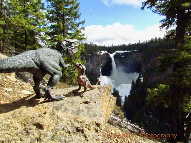 Tyrannosaurus Rex in British Columbia (Robert L Photography)