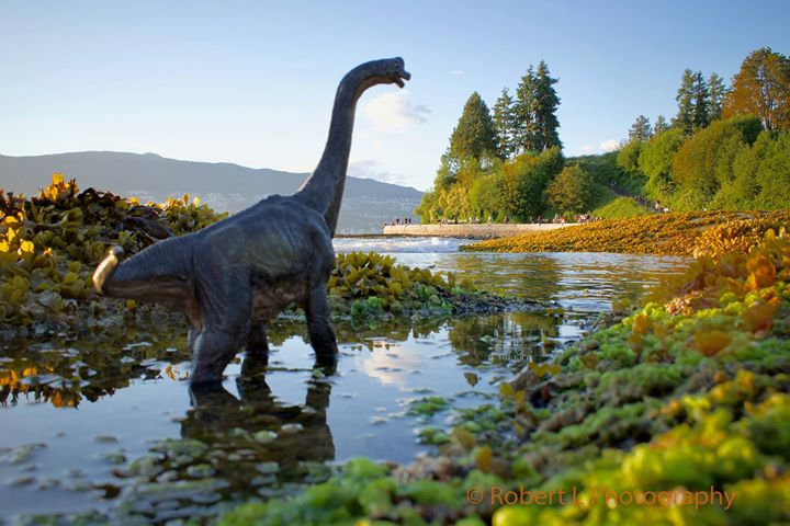 A Sauropod in Vancouver's Stanley Park (Robert L Photography)