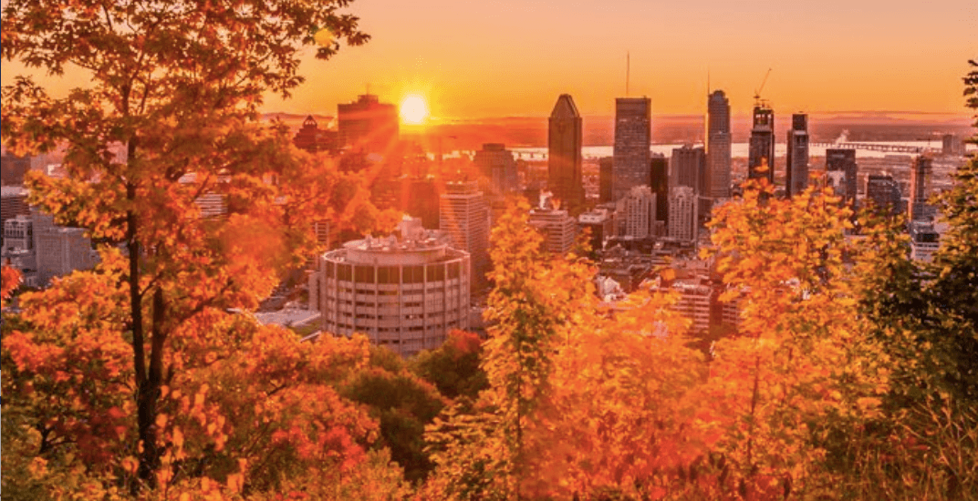 11 things to do in Montreal today: Thanksgiving Monday, October 8