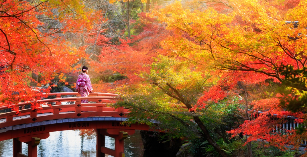 You can fly from Calgary to Japan this month for just $625 roundtrip