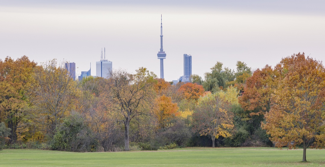 25 FREE Toronto events worth checking out this October