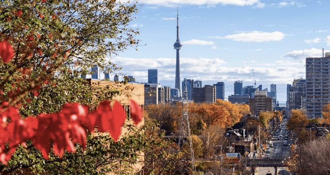 Top 6 in the 6ix: Can't miss Toronto events, November 5 to 11