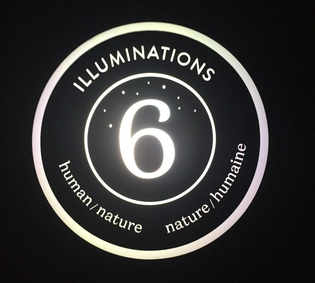 Illuminations: human/nature