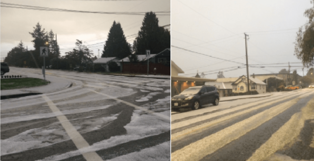 Hail turns South Surrey and White Rock into winter wonderland (PHOTOS)
