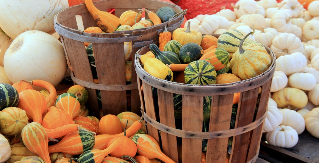 Metro Vancouver winter farmers' market guide 2017