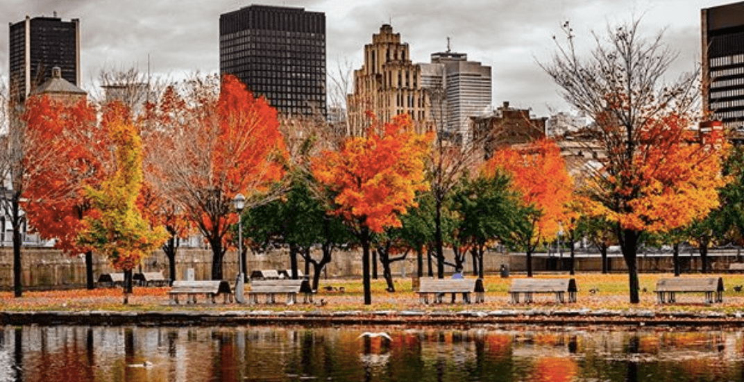 5 things to do in Montreal today: Monday, October 22