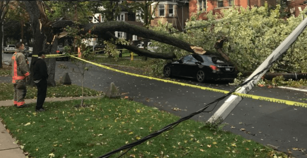 Intense and powerful windstorm rocked Toronto on Sunday (PHOTOS)
