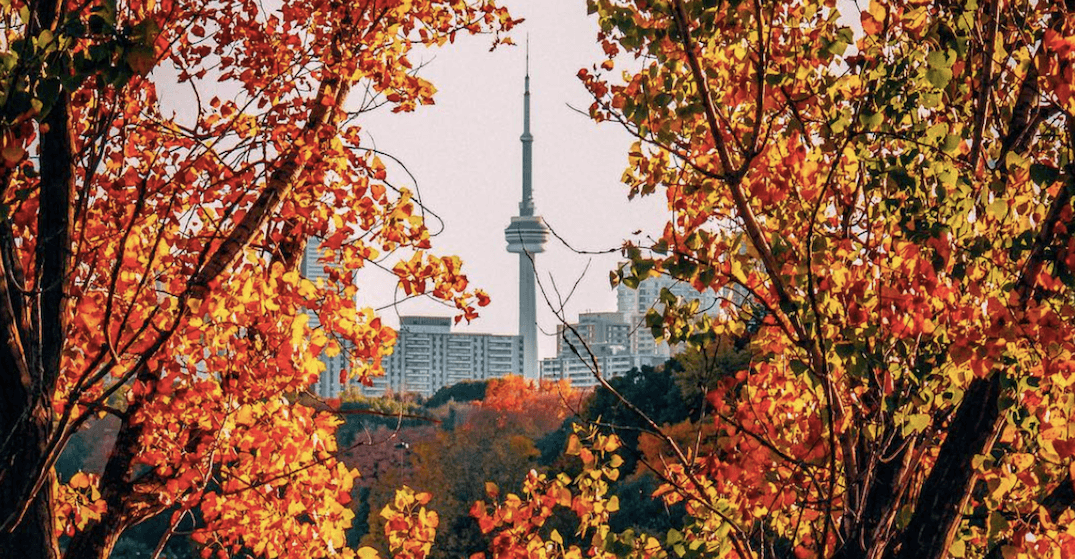 15 things to do in Toronto today: Sunday, October 22