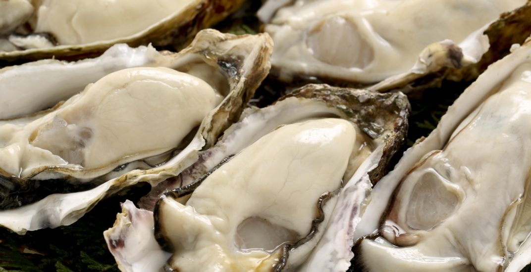 Farm-raised Pacific Oysters are being recalled because of toxin