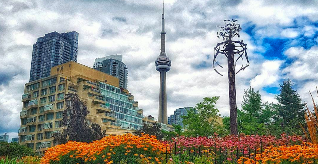5 things to do in Toronto today: Thursday, October 19