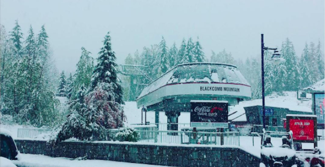 It's been snowing like crazy at Whistler (PHOTOS)