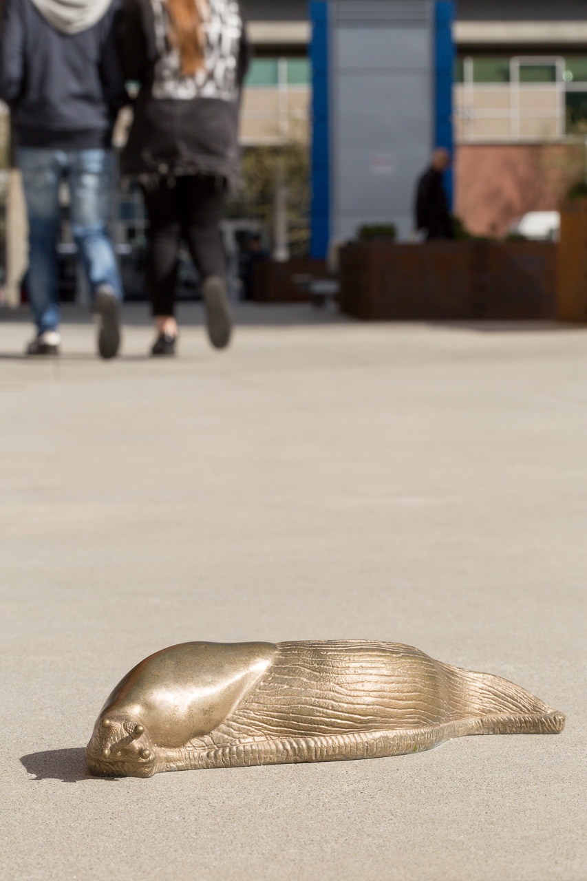 A bronze slug part of A Long Conversation (For Oona) by Peter Gazendam in Vancouver (Blaine Campbell)