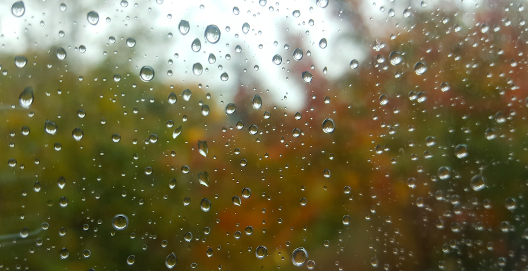 Vancouver set to see showers right through the weekend