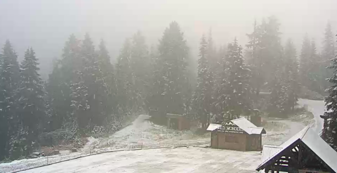 Grouse Mountain is currently getting a fresh dumping of snow