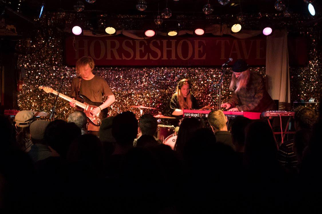 taste of iceland horseshoe tavern