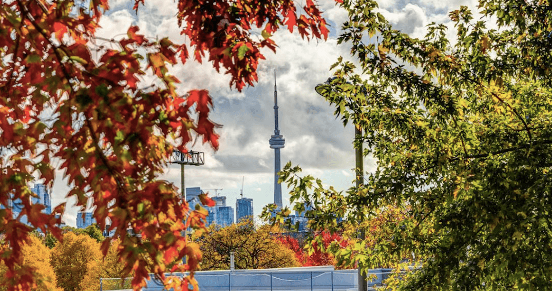 5 things to do in Toronto today: Thursday, October 26