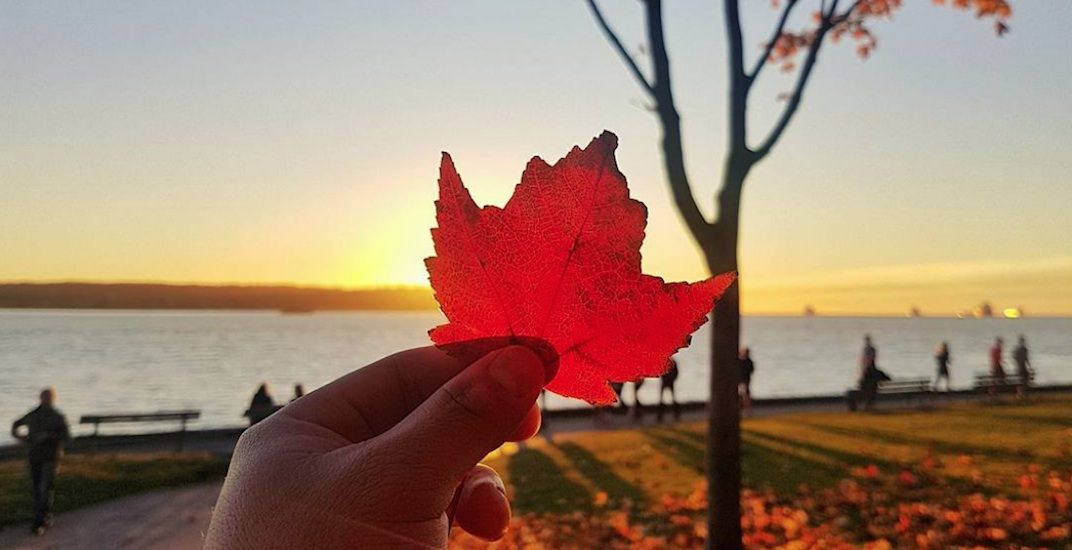 7 straight days of sunny weather are in Vancouver's forecast
