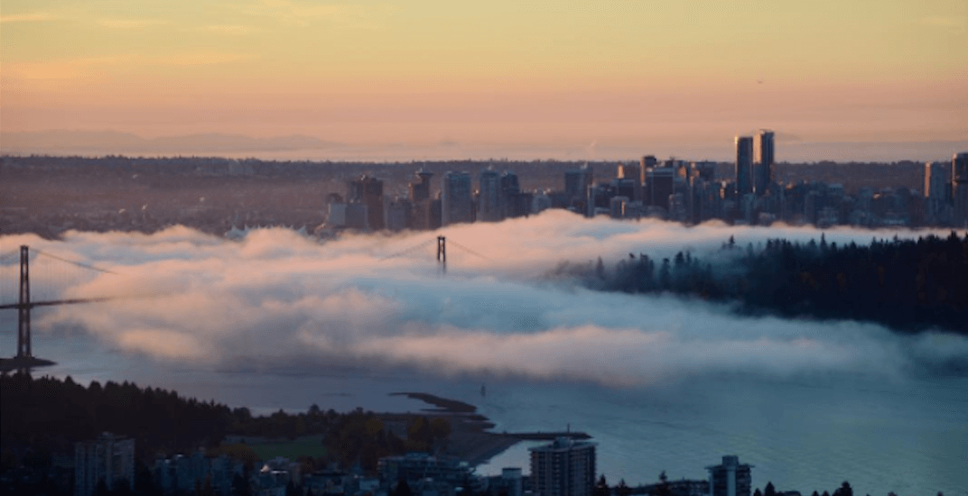 Morning fog blankets Vancouver for second day in a row (PHOTOS)