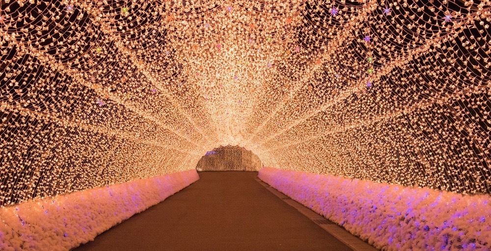 The Toronto Christmas Market will have a 100-foot long light tunnel this year
