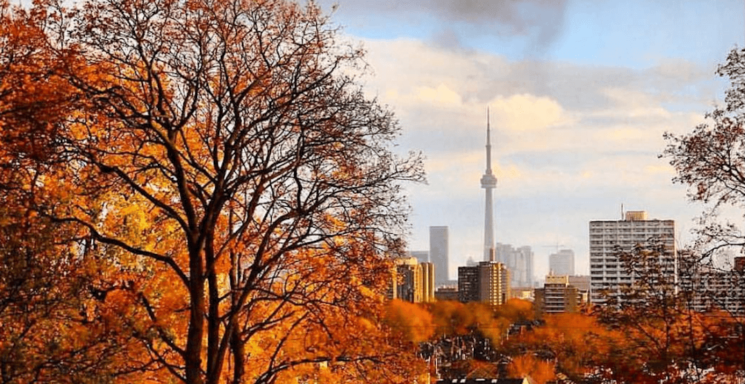 40 Toronto events worth checking out this November