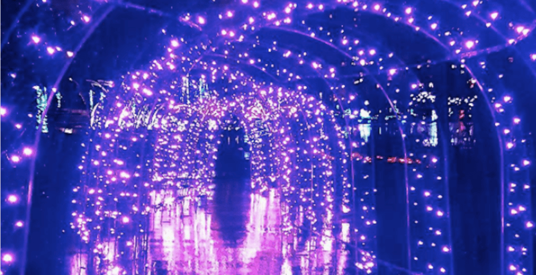 The magical Lights at Lafarge returns to Metro Vancouver next month. (Intagram / @)lyshcrel