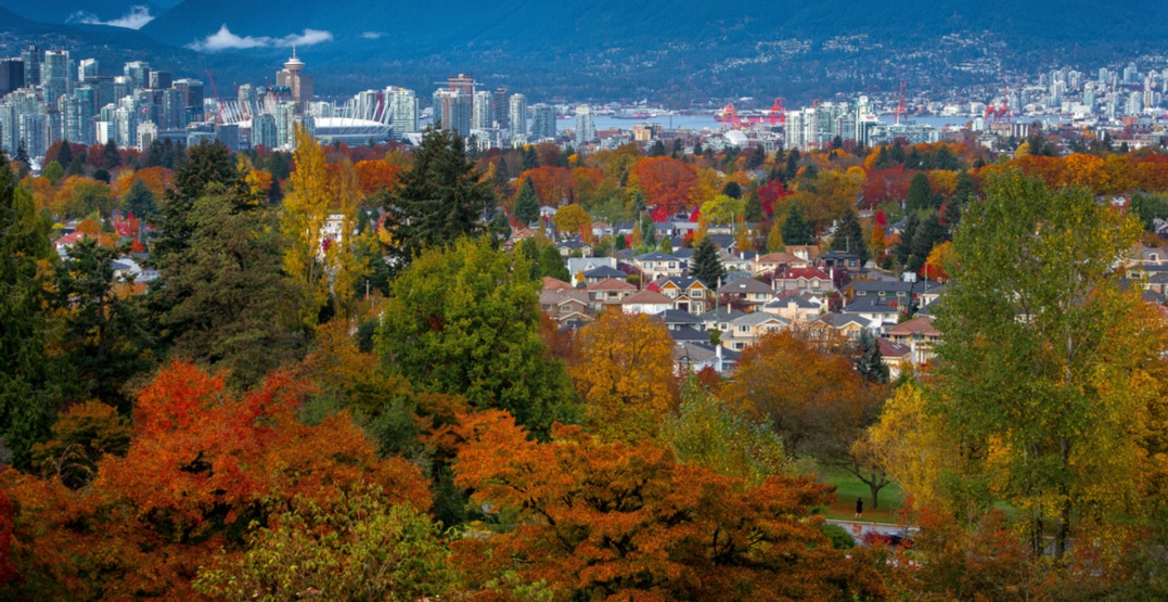 7 things to do in Vancouver today: Wednesday, November 1