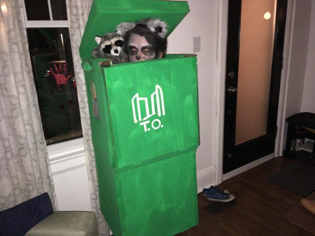 Toronto raccoon Halloween costume